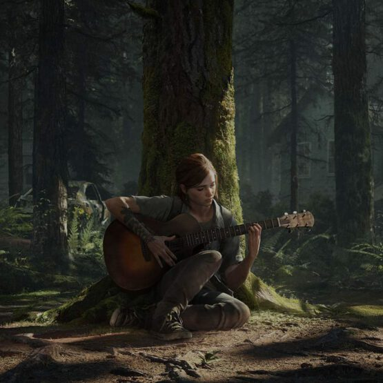 Titelbild The Last of Us Part 2
